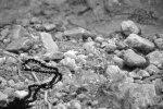 prayer-rope-3.jpg